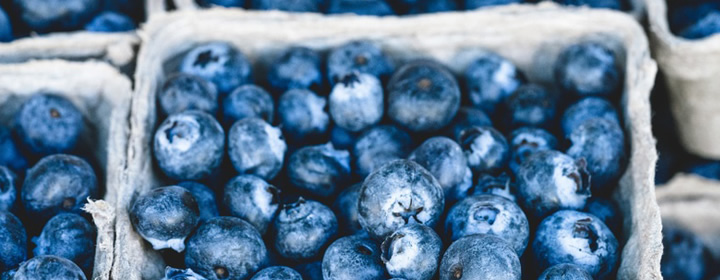 July is National Blueberry Month!